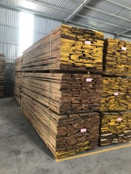 White oak 20 mm