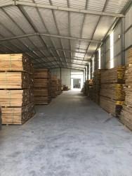 Kho gỗ sồi đỏ 25-45-50 mm