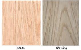 Màu sắc gỗ sồi đỏ và gỗ sồi trắng (red oak và white oak)